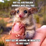 not-all-australian-animals-will-kill-you-ti-cd-dont-get-me-wrong-he-wants-to-he-just-cant-q7NoE.jpg