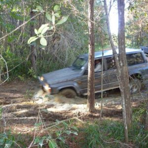 A bit of fun out with mates at Beerburrum State Forest north of Brisbane.